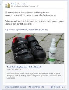 2013-10-16-zelba-facebook
