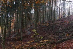 Nyt 8 km langt MTB-spor i Vejle